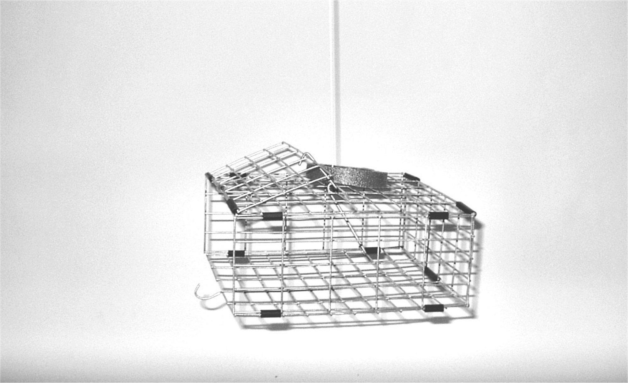 Tackle Factory PU-95 Automatic Pop Up Crab Trap