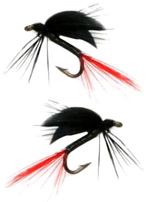 South Bend BG200 Black Gnat 2Pk (Sz 12-14)