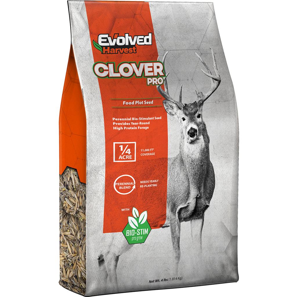 Evolved Clover Seed  <br>  4 lb.