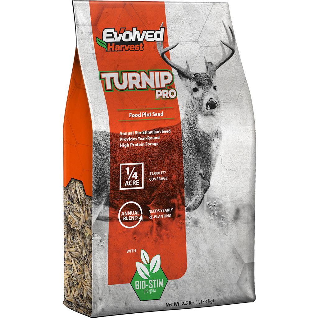 Evolved Turnip Seed  <br>  2.5 lb.