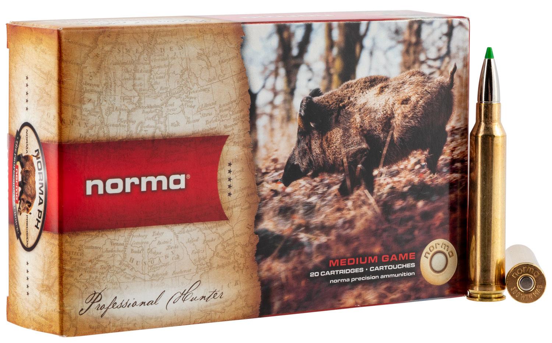NORMA 20174232  300 WIN MAG   150 ECOSTRIKE  20/10