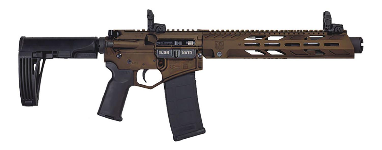 Diamondback DB15PDS10MB DB15  5.56x45mm NATO 10