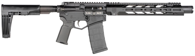 Diamondback DB15PDPS10B DB15  5.56x45mm NATO 10