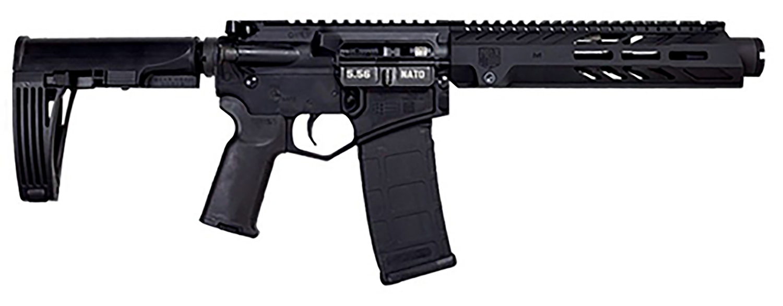 Diamondback DB15PD10B DB15  5.56x45mm NATO 10