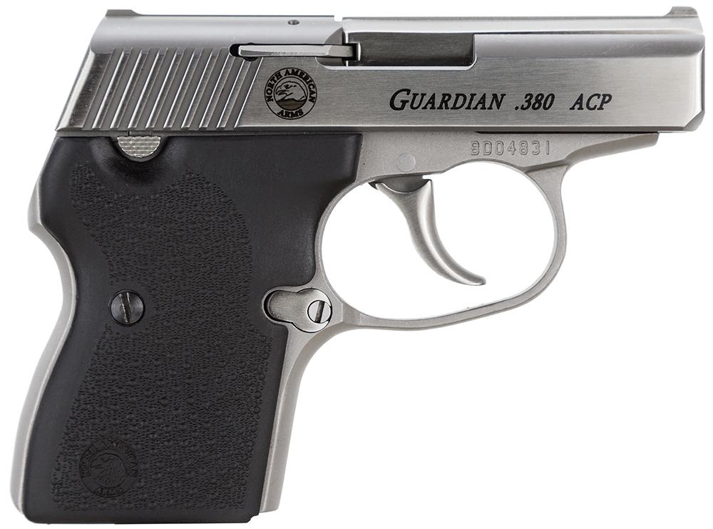 NAA GUARDIAN Guardian  380 ACP 2.50