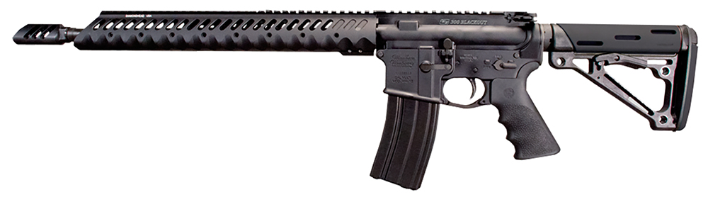 Windham Weaponry R16SFSDHHT0 WW Semi-Automatic 300 AAC Blackout/Whisper (7.62x35mm) 16