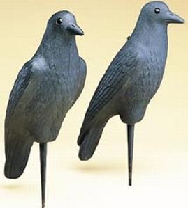 Flambeau Crow Decoy  <br>  12 pk.